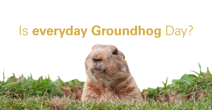 ground hog sticking head out of the ground
